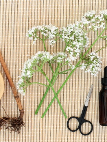 How To Take Valerian For Sleep